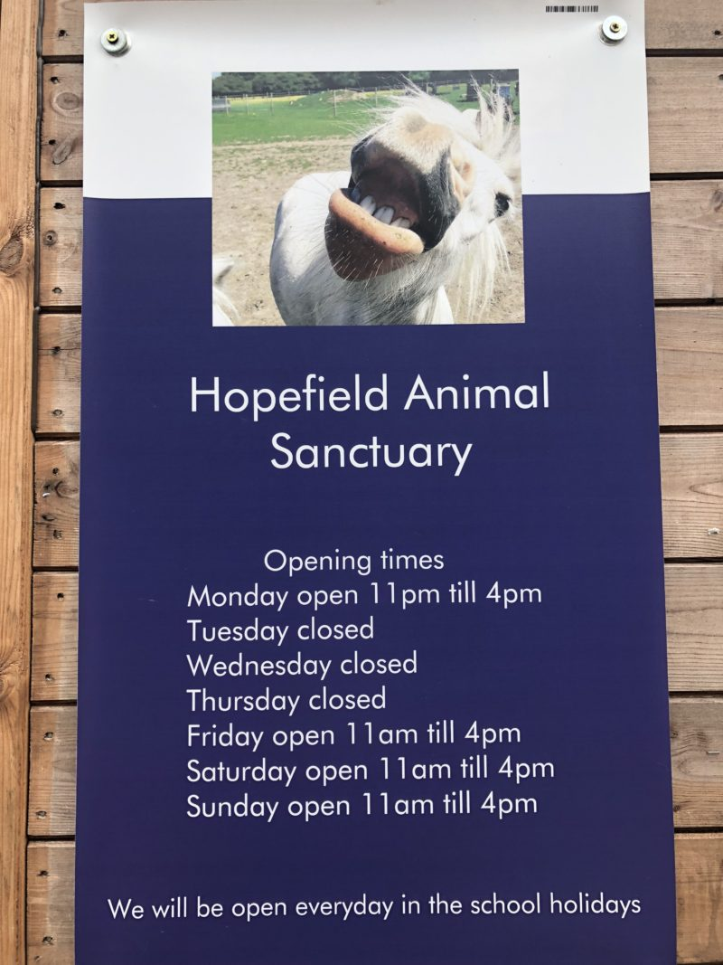 opening-hours-hopefield-animal-sanctuary-essex